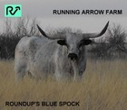 Roundup's Blue Spock